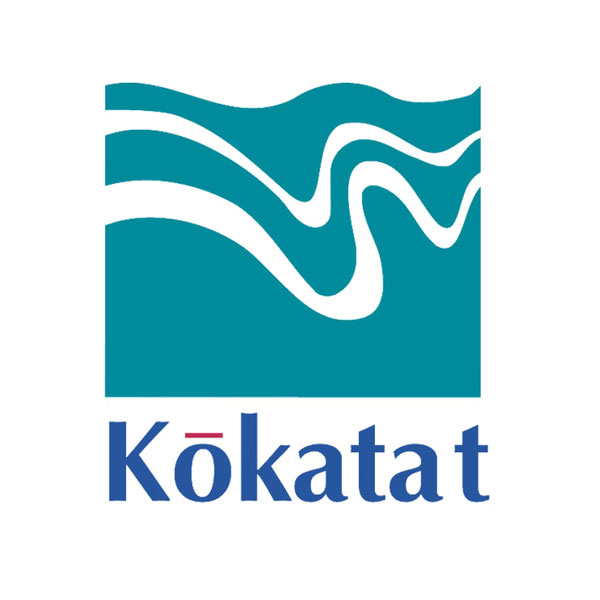 Kokatat