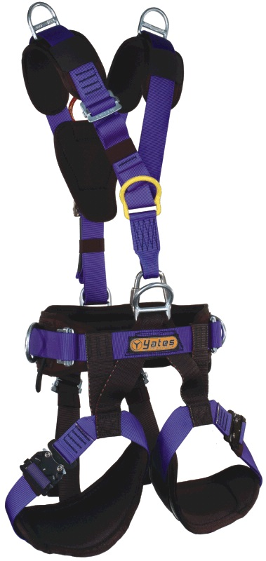 0000537_380-voyager-harness